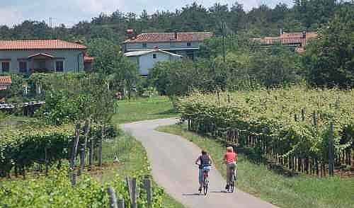 Wine And Wellness Slovenia 8-day Guided Cycling Tour